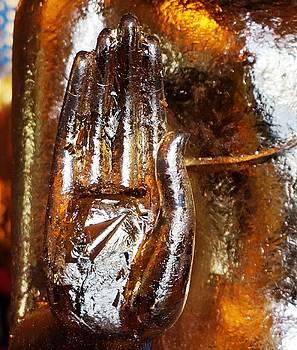 Golden Hand by Julia Ivanovna Willhite