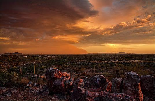Saija Lehtonen - Golden Hour Desert Dust