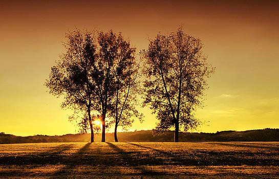 Golden Hour by Victoria Winningham