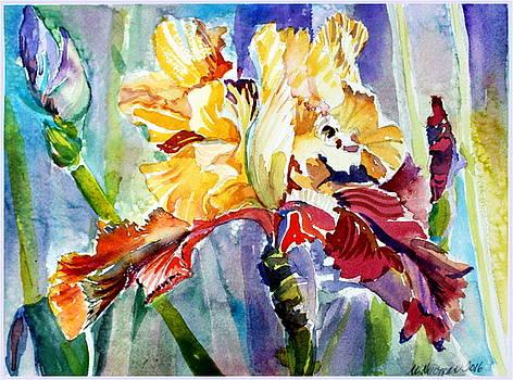 Golden Iris by Mindy Newman