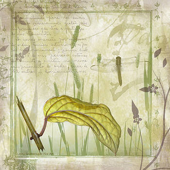 Golden Leaf and Dragonfly by Lesley Smitheringale