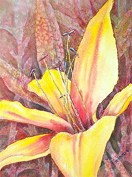 Golden Lily by Carolyn Rosenberger