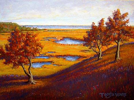 Golden Marsh by Tanja Ware