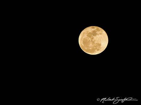 Golden Moon by Melinda Swinford