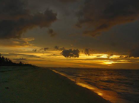 Golden Morning by Jeff Breiman