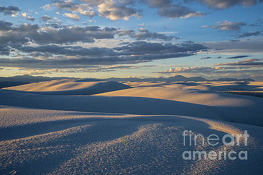 Sandra Bronstein - Golden Morning - White Sands National Monument