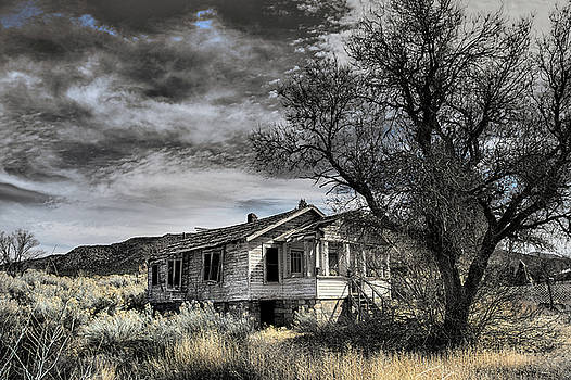 Golden New Mexico by Robert FERD Frank