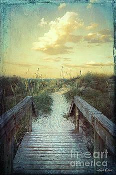 Golden Pathway by Linda Olsen