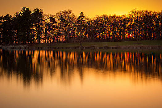 Golden Pond by Jackie Novak