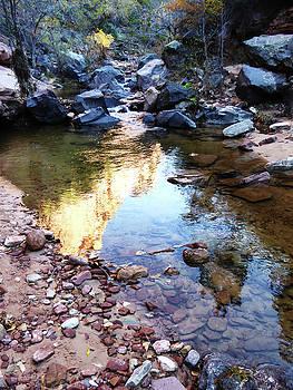 Golden Reflection by Alan Socolik