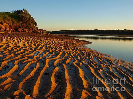 Golden Sand by Trena Mara