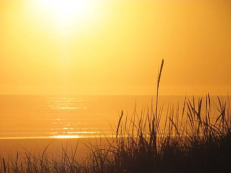 Golden Sunset I by Gregory Smith