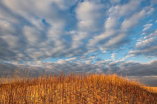 Golden Sunset by Sheen Watkins