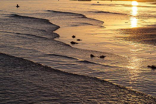James BO Insogna - Golden Tide