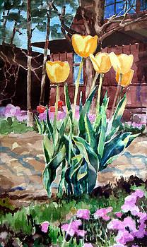 Golden Tulips Singing by Bill Meeker