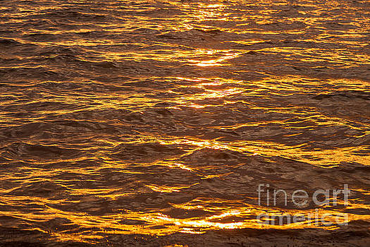 Golden Water by Juan  Silva
