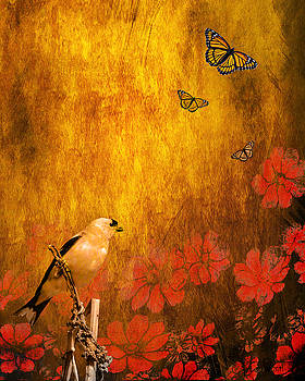 Wingsdomain Art and Photography - Golden