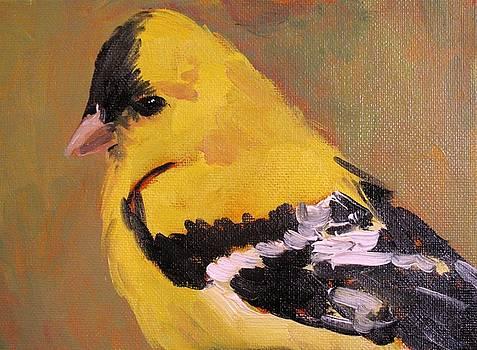 Goldfinch by Susan E Jones