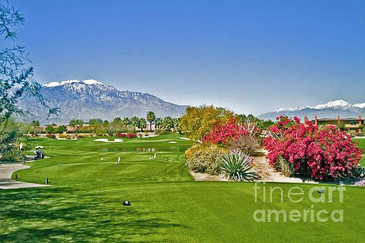 David Zanzinger - Golfing on a Beautiful Day