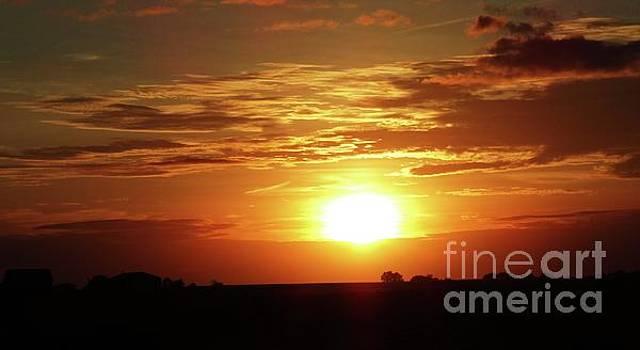 Good Morning Sun  by J L Zarek