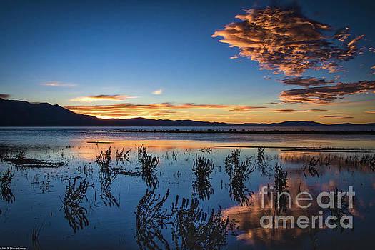 Good Night Tahoe by Mitch Shindelbower