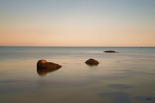 Gooseberry Island II Color by David Gordon