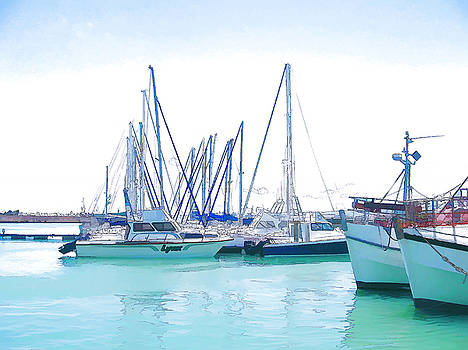 Gordon's Bay Harbour by Jan Hattingh