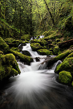 Gorton Creek by Brian Bonham