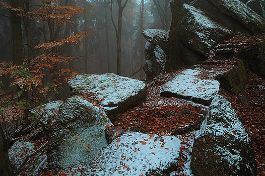 Jenny Rainbow - Gothic Rocks. In Mysterious Woods