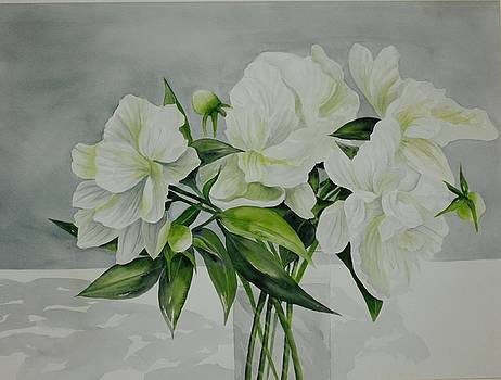 Graceful Peonies by Becky Taylor