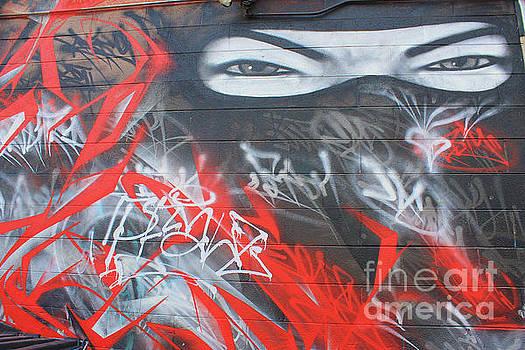 Graffiti Ninja  by Teresa Thomas