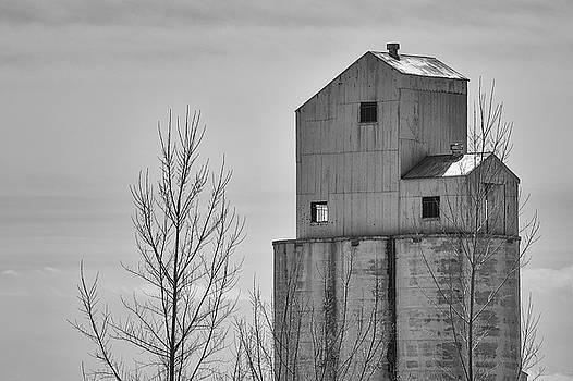 Grain Elevator II by Dee Browning