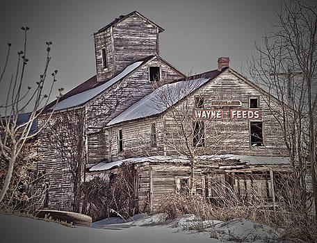 Grain Mill by Robert Geary