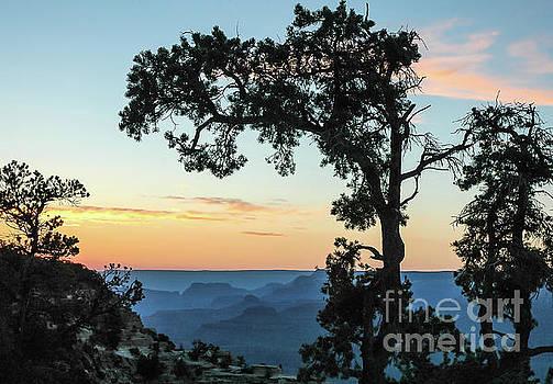 Grand Canyon At Sunset by Nick Boren