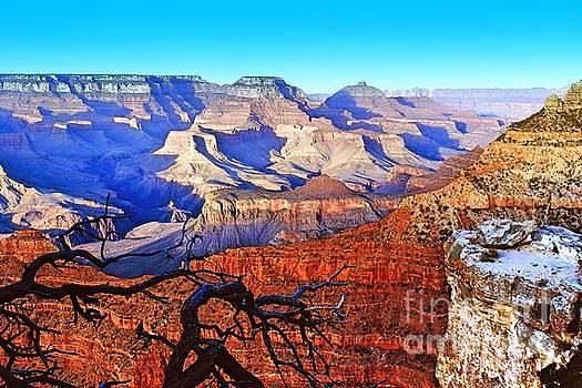 Grand Canyon by Irina Hays