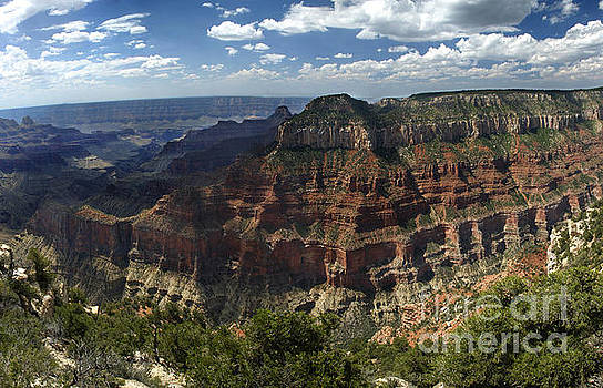 Grand Canyon North Rim by Jason Kolenda