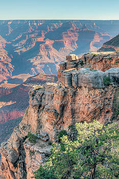 Grand Canyon South Rim by Ray Devlin