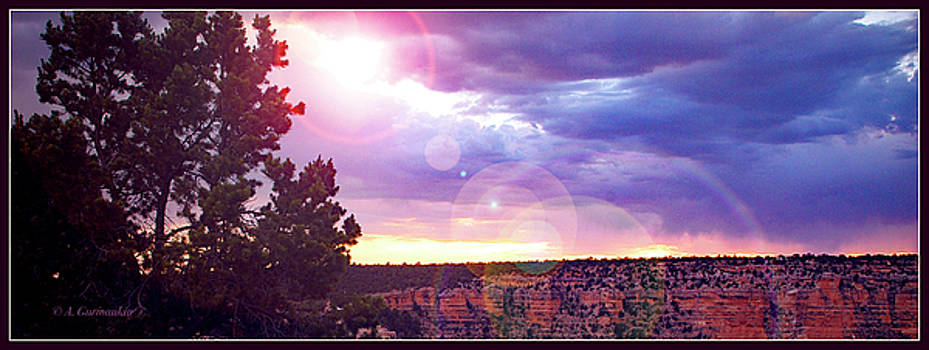 Grand Canyon, Spiritual Sunset with Flair and Tree Silhouettes by A Gurmankin