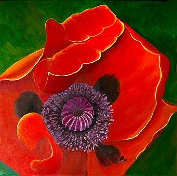 Grand Hotel Poppy by Anne Kibbe