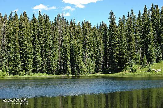 Grand Mesa Colorado by Rachele Morlan