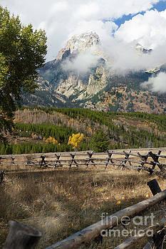 Grand Teton National Park, Wyoming by Greg Kopriva