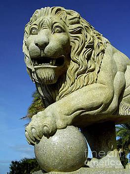 Granite Lion by D Hackett