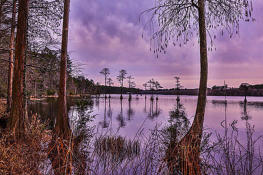 Grape Sunset by Jimmy McDonald