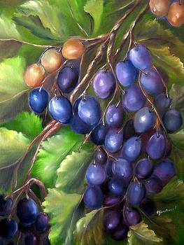 Grapevine by Carol Sweetwood