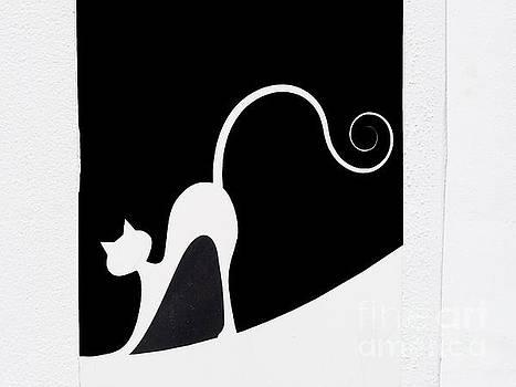 Graphic Elegant Spanish Cat by Brenda Kean