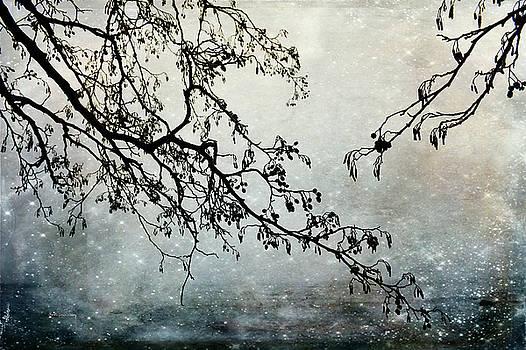 Grasping the Distance by Randi Grace Nilsberg