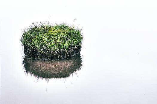 Grass Island by Joana Kruse