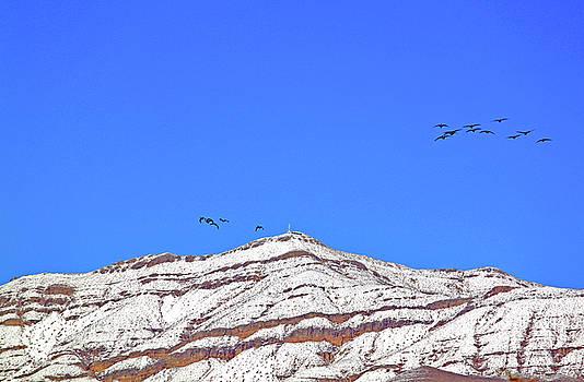 Grass  Peak  Station  Las  Vegas  Iii by Carl Deaville