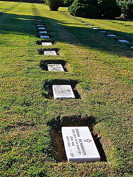 Graves in Formation by E Robert Dee