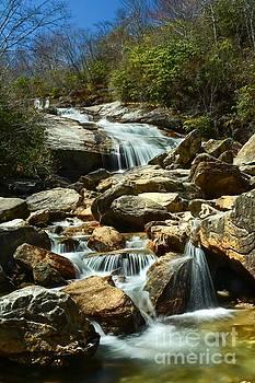 Graveyard Fields Waterfall by Debbie Green